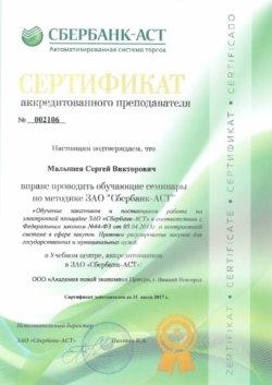 Сертификат Малышев Сергей Викторович Сбербанк-АСТ 44 ФЗ